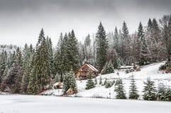 Vinterskog i Carpathians Arkivfoto