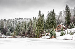 Vinterskog i Carpathians Arkivbild