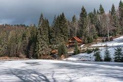 Vinterskog i Carpathians Royaltyfri Bild