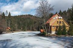 Vinterskog i Carpathians Royaltyfria Bilder
