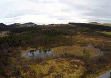 Vinterskog och jordbruksmark Arkivbilder
