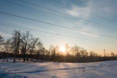 Vinterskog på solnedgången Arkivfoto