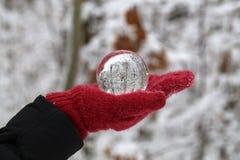 Vinterskog till och med en genomskinlig exponeringsglasboll royaltyfria bilder