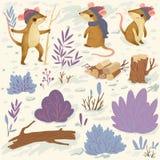 Vinterskogbeståndsdelar royaltyfria bilder