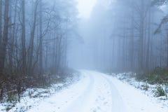 Vinterskogspår i dimma royaltyfria bilder