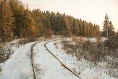 Vinterskogväg och sol arkivbild