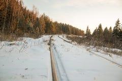 Vinterskogväg och sol arkivbilder
