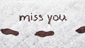 Vinterskotryck med handskriven miss som du snöar Royaltyfri Fotografi