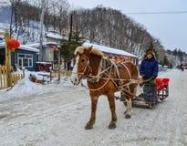 Vintersläderitter som dras av hästen i snö arkivfoto