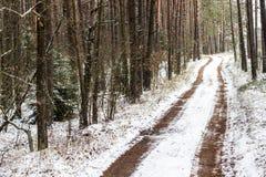 Vinterslinga Royaltyfria Bilder
