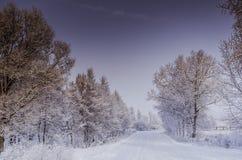 Vintersnödrivor, rysk vinter Arkivbilder