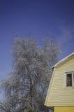 Vintersnödrivor, rysk vinter Arkivfoto