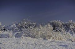 Vintersnödrivor, rysk vinter Royaltyfri Fotografi