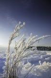 Vintersnödrivor, rysk vinter Arkivbild