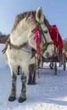 Vintersnövagn Royaltyfria Foton