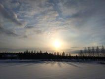 Vintersolnedgång över ett fält och träd Arkivfoto