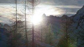 Vintersolnedgång över Forest Trees Silhouette i den snöig fjällängbergTid schackningsperioden Pan Left till rätten stock video