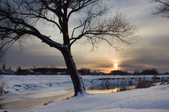 Vintersolnedgång Royaltyfria Foton