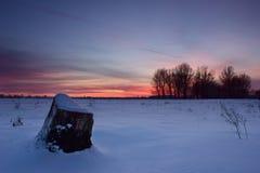 Vintersolnedgång Arkivfoton