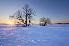 Vintersolnedgång Arkivbild