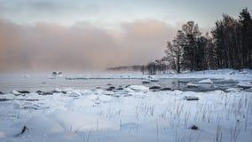 Vintersolnedgång med kulör mist Royaltyfri Bild
