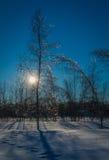 Vintersolnedgång och skuggor Arkivbilder