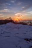 Vintersolnedgång på havet Arkivfoto