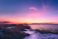 Vintersolnedgången på rosa färgerna för hav n färgar royaltyfri foto