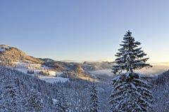 Vintersoluppgång i Bayern Royaltyfria Bilder