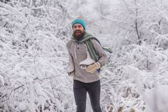 Vintersporten och vilar, jul royaltyfri foto
