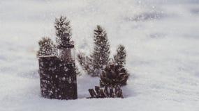 Vintersprejflaska Arkivbild