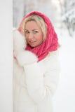Vinterstående av den härliga kvinnan Royaltyfria Foton