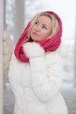 Vinterstående av den härliga kvinnan Royaltyfria Bilder