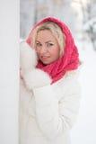 Vinterstående av den härliga kvinnan Royaltyfri Bild