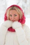 Vinterstående av den härliga kvinnan Royaltyfri Foto