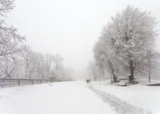 Vinterstaden parkerar Arkivfoto
