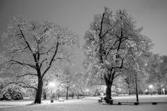 Vinterstaden parkerar i afton Arkivfoto