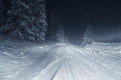 Vinterstorm på natten royaltyfri fotografi