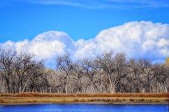 Vinterstormen att närma sig fiskedammet Arkivfoton