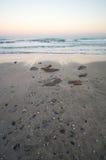 Vinterstrand Black Sea i Bulgarien Royaltyfri Fotografi