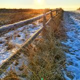 Vinterstranden går Fotografering för Bildbyråer