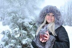 Vintertea arkivfoton