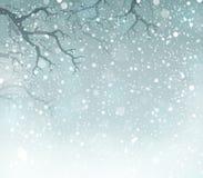 Vintertemabakgrund 5 Fotografering för Bildbyråer