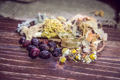 Vintertematerial med kryddor Arkivfoto