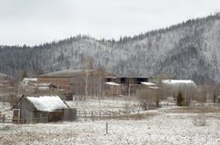 Vintertid i Carpathian berg. Royaltyfria Bilder