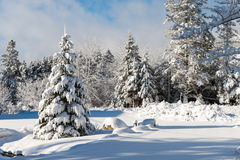 Vintertid i Nova Scotia royaltyfria bilder