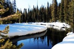 Vintertidbild i den Yellowstone nationalparken Fotografering för Bildbyråer