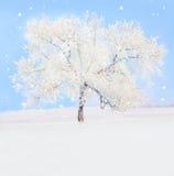 Vintertree Royaltyfri Bild