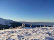 Vinterukrainare Carpathians Arkivbild