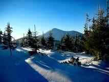 Vinterukrainare Carpathians Arkivbilder